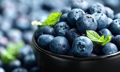 Blueberriesfeature465x280.jpg