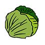 Cabbage90x90.jpg