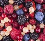 berries150x136.jpg