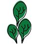 spinach90x90.jpg