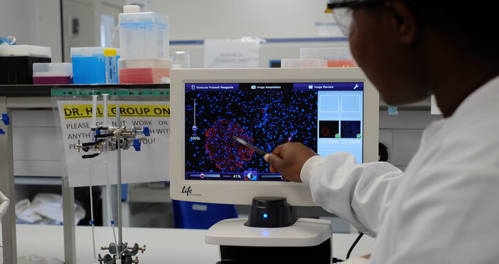 A Diabetes UK researcher in a lab looking at results on a lab computer screen