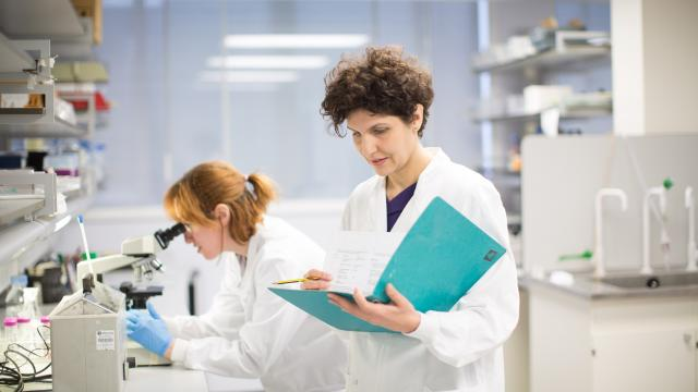 Woman in the lab doing research